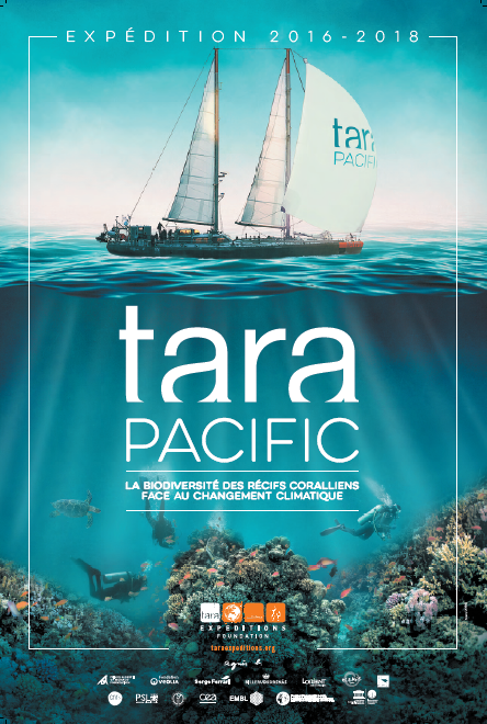 TARAPACIFIC AFFICHE